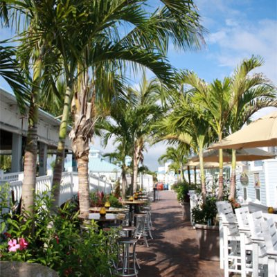 outdoor restaurant with palm trees